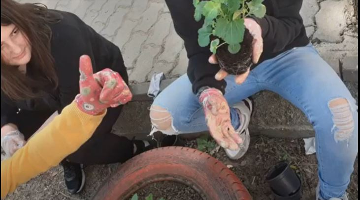 Think and Create your Own Hobbies - Bulgaria- School yard