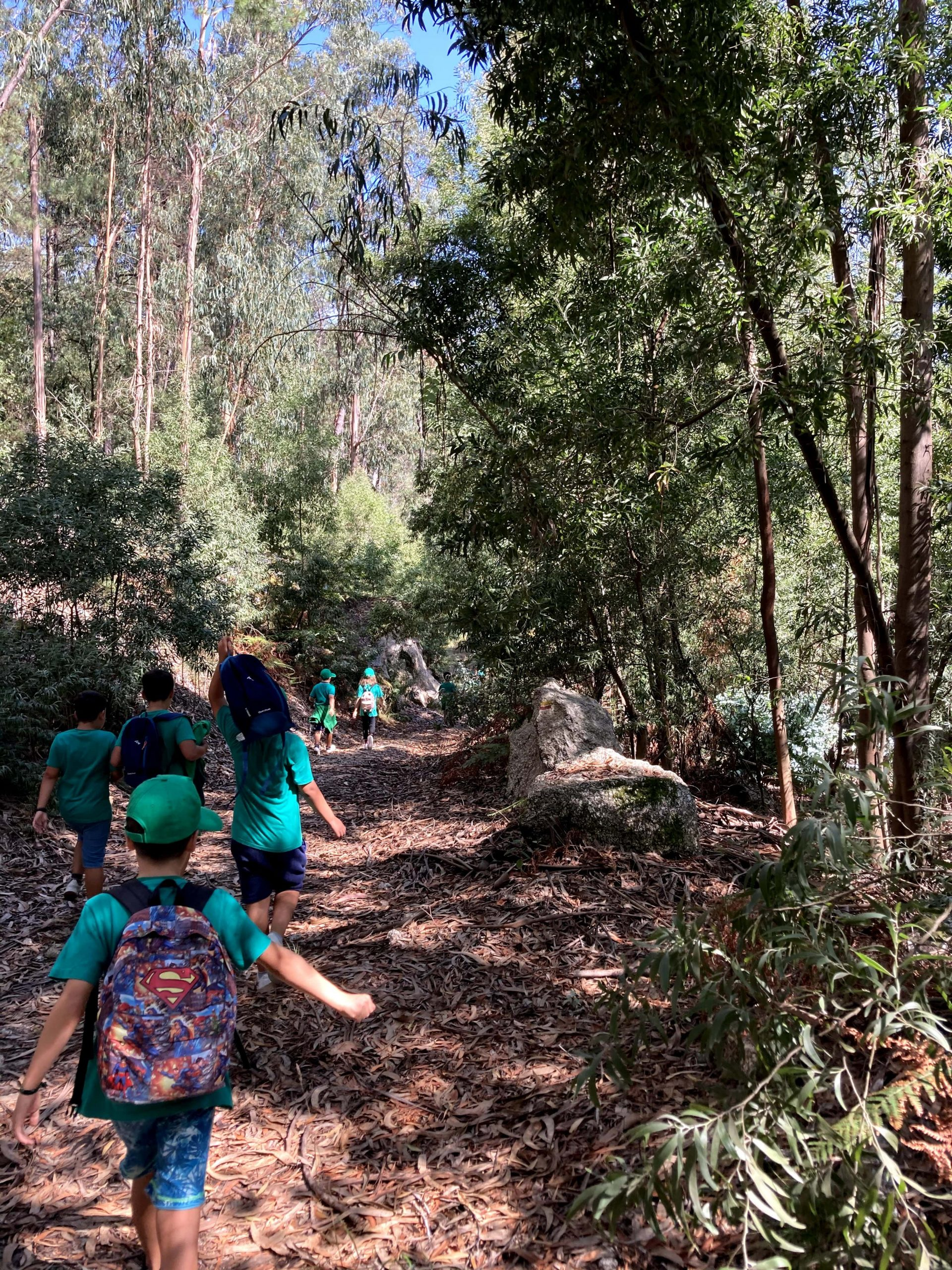 Think and Create your Own Hobbies - Portugal - Environmental education